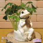 かえるの置物 カエルとクローバーの貯金箱 かえる バンク  蛙  オブジェ  インテリア 縁起物