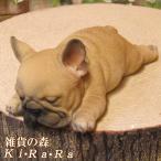 犬の置物 フレンチブルドッグ リアルな フレブル ウトウトねむねむ フィギア オブジェ ガーデニング ベランダアート