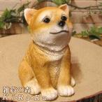 犬 置物 柴犬 可愛いアニマルバンク おすましドッグ 貯金箱 いぬ イヌ オブジェ インテリア デスク周り