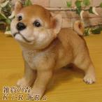 犬の置物 柴犬 秋田犬 リアルな犬の置物 豆しば お散歩中 子いぬのフィギア イヌのオブジェ ガーデニング 玄関先 陶器