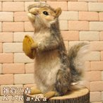 Yahoo!雑貨の森 Ki・Ra・Ra Yahoo!店りす リアルな動物のぬいぐるみ 灰色リス アニマル雑貨・置物・可愛いグッズ りすのフィギア
