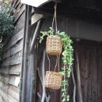 『アラログつり下げかごA』アラログ バスケット カゴ かご ハンギング ガーデン インテリア