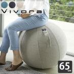 vivora バランスボール ビボラ シーティングボール ルーノ シェニール LUNO 65cm カバー付き 二重構造 破裂防止 ポンプ付 ヨガ