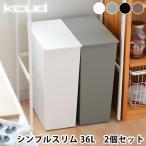 ショッピングゴミ箱 クード ゴミ箱 kcud シンプル スリム 2個セット 縦型 おしゃれ キッチン 45リットル ゴミ袋対応 キャスター