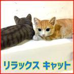 Yahoo!雑貨屋フリーリラックスキャット 猫 置物 リアル ねこ雑貨 ガーデン オーナメント おしゃれ オブジェ
