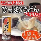 ひっぱりうどん 送料無料 山形 村山 郷土料理 3袋入(