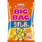 BIG BAG ポテトチップス うすしお味 170g入 1袋 【バラ売り】 カルビー(株) 【24袋まで1個口送料でお届けが可能です】