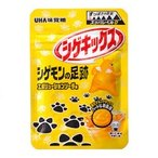 シゲキックス シゲモンの足跡 エボリューションソーダ 20g入×10個 UHA味覚糖(株)