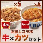 すき家×なか卯 お試しコラボ牛×カツセット 牛丼の具5パック×カツ丼の具4食 冷凍食品