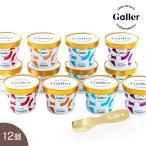 ショッピングアイスクリーム 遅れてごめんね父の日 限定 とろけるスプーン付き ベルギー王室御用達 Galler(ガレー)監修 プレミアム アイスクリーム  12個 プレゼント