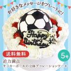 お誕生日 ギフト 送料無料 サッカーボールの立体デコレーションケーキ5号
