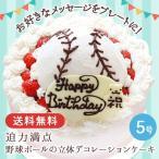 お誕生日 ギフト 送料無料 野球ボールの立体デコレーションケーキ5号