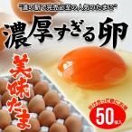 道の駅で売切れ必至 養鶏場直送の新鮮卵 美味たま(50個)