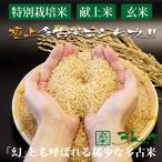 令和2年産 新米 産地直送 市場に出回りにくい 萩原農場 の 特別栽培米 多古米 コシヒカリ 【玄米】 3kg