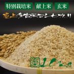 令和2年産 新米 産地直送 プロも認める 萩原農場 の 特別栽培米 多古米 コシヒカリ 【玄米】 10kg