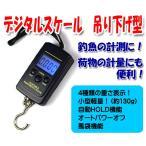 多機能デジタルスケール 温度計・風袋機能付 40kg 釣魚計量