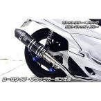 アニバーサリーマフラーユーロタイプブラックカーボン ウイルズウィン(WirusWin) PCX125(EBJ-JF28)2010年〜