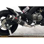 Z125 PRO(プロ)BR125H DDRタイプマフラー GPタイプ ブラックカーボンバージョン フルエキゾースト ASAKURA(浅倉商事)