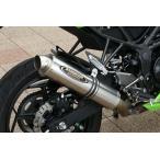 Ninja250SL(ニンジャ) ストリートコンセプト スリップオン 真円サイレンサー チタン素地 STRIKER(ストライカー)