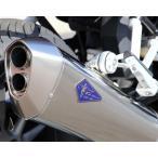 水冷BMW R1200RS(EBL-R12NB) WYVERN(ワイバン)フルエキゾーストチタンマフラー r's gear(アールズギア)