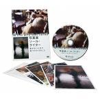写真家ソール・ライター 急がない人生で見つけた13のこと (DVD)