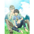 SUPER LOVERS 第2巻 限定版 (DVD)