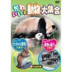 Yahoo!NEW SEEKかわいいネ 動物大集合 (DVD)