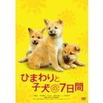 ひまわりと子犬の7日間 (DVD) 新品