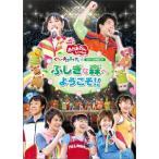 NHKおかあさんといっしょ スペシャルステージ 「ぐ~チョコランタンとゆかいな仲間たち ふしぎな森へようこそ!!」 (DVD) 中古