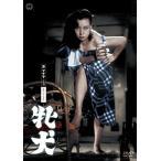 牝犬 (DVD) 中古