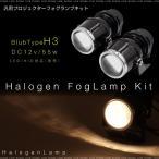 汎用 プロジェクターフォグランプ 2個セット/H3/55W/ハロゲン HID/白/ホワイト/12V/集光/カットラインパネル/HID交換可/条件付き送料無料/_28029