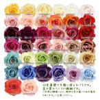 (造花 アートフラワー バラ) ミシェルローズ(GL21)