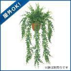 (造花 フェイクグリーン 人工観葉植物) (屋外OK)アジアンタムハンギングブッシュx11(プラスチック)(GL105)