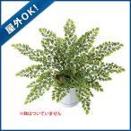 (屋外OK 壁面緑化 造花 フェイクグリーン 人工観葉植物) アジアンタムブッシュ(27)(DF34/16)