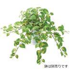 (壁面緑化 造花 フェイクグリーン 人工観葉植物) フレッシュコリウスブッシュ(DF13)