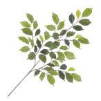 (人工観葉植物 フェイクグリーン 造花)ベンジャミンフィカススプレイx50(GL74)