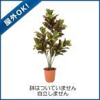 (屋外OK)(造花 人工樹木 人工観葉植物 フェイクグリーン)耐水120cmクロトンツリー(88)(DF34/42)
