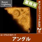 (屋外 イルミネーションライト壁面装飾)アングル(RL98)