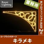 (屋外 イルミネーションライト壁面装飾)キラメキ(RL97)