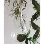 花瓶 ロープ付きクリアハンギングベース Sサイズ