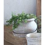 花瓶 オリンポス ポット