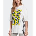 tシャツ Tシャツ グラフィックTシャツ [GRAPHIC TEE] アディダスオリジナルス