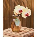 花瓶 S.Mフラワーベース16cm
