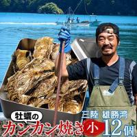 生牡蠣カンカン焼きセット 殻付き生ガキ12個 三陸 宮城県産 送料無料