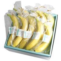 ・バナナ×10(エクアドル産)  関連キーワード:銀座千疋屋,ギフト,高級フルーツ,通販,果物