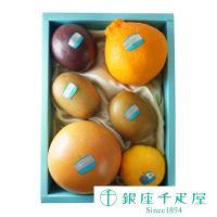 ・王林りんご×1 ・富山干柿×2 ・デコポン×1 ・グレープフルーツ×1 ・オレンジ×1 ・キウイ×...