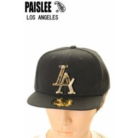 PAISLEE BRAND CAP USA VINTAGE FRAMES COMPANY USA PAISLEE BRAND LOS ANGELES GOLD VINTAGE FRAMES ペイズリー キャップ SNAPBACK CAP