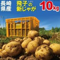 【予約受付中 12月中旬より順次発送】じゃがいも 長崎県島原産 馬鈴薯 10kg 【秋じゃが 新じゃが】【送料無料】