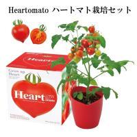 ハートの実がなるHeartomato ハートマト栽培セット。 ハートマトとはぷっくりした可愛らしいハ...