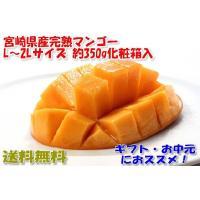 近年、東国原元知事のおかげで大ヒットしている、宮崎県産完熟マンゴーです。 ●長期ご不在等、急なご予定...